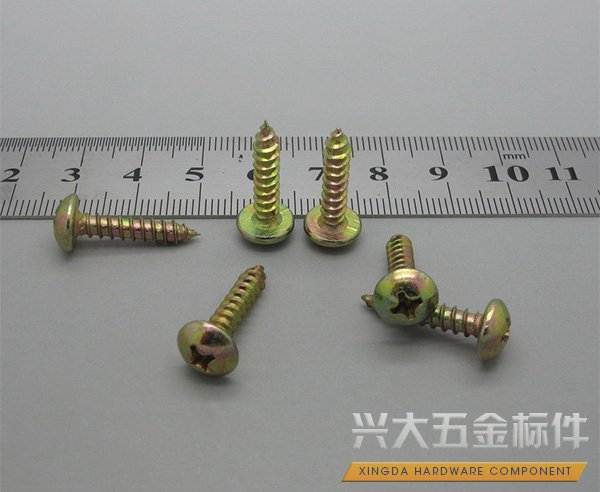 Self-Tapping Screws 06